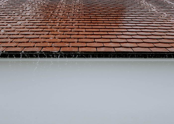 roof leak repair Wellington